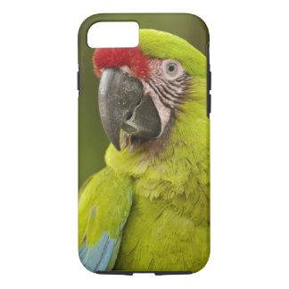 Military macaw (Ara militaris) CAPTIVE. Amazon iPhone 8/7 Case