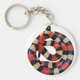 Milk snake key ring