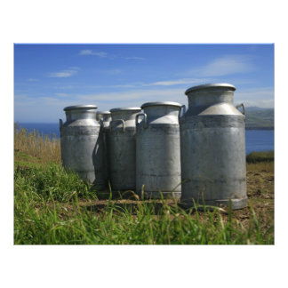 Milk urns flyer design