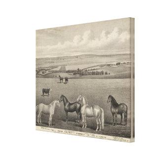 Mill Brae Ranch, Kansas Canvas Print