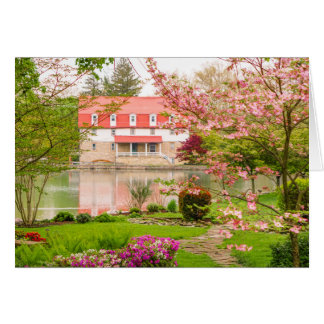 Mill in spring with pond card