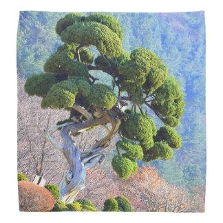 Millenium Juniper Tree Bandana