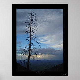 Miller Canyon Solitude Poster
