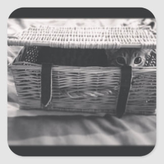 Millie Cat in basket Square Sticker