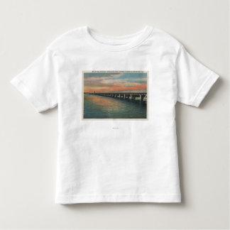 Million Dollar Bridge over Manatee River, Toddler T-Shirt