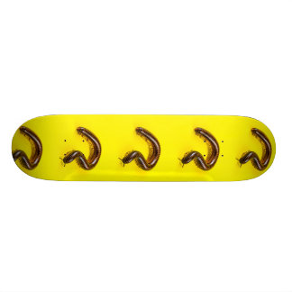 Millipede Skateboard Decks
