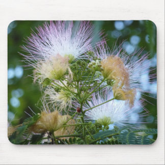Mimosa and Lady Bug Mouse Pad