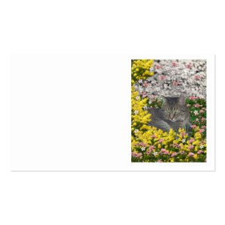 Mimosa the Tiger Cat in Mimosa Flowers Business Card Templates