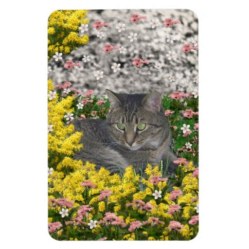 Mimosa the Tiger Cat in Mimosa Flowers Vinyl Magnet