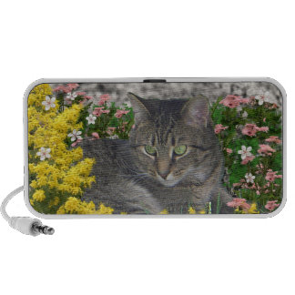 Mimosa the Tiger Cat in Mimosa Flowers Speaker System