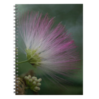 Mimosa Tree Pink Wildflower Floral Notebook