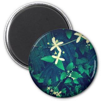 Mimosa Trees 6 Cm Round Magnet