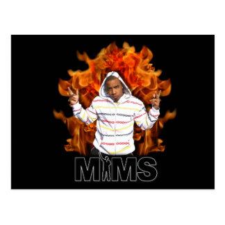 MIMS Postcard - Eternal Flame