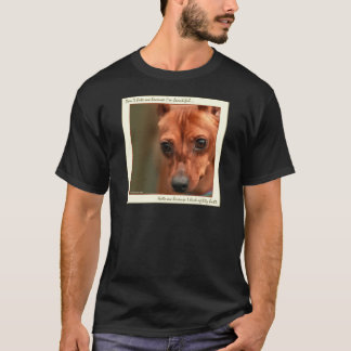 Min Pin Beautiful: Agility T-Shirt