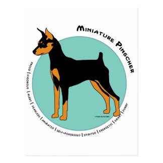 Min Pin Fearless Black and Tan on Green Post Cards