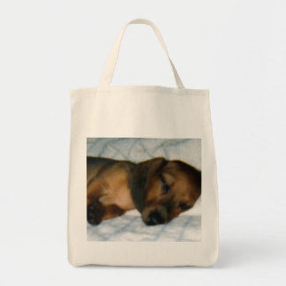 Minature Dachshund Tote Bags