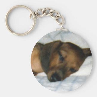 Minature Dachshund Basic Round Button Key Ring