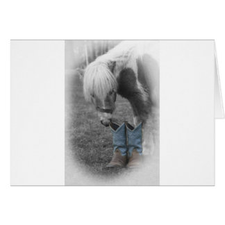 minature horse and boots cards
