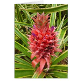 Minature Pink Pineapple Greeting Card