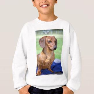 Minature Smooth Dachshund Sweatshirt