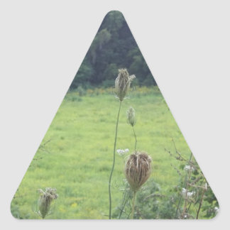 Mines of Spain Meadow Triangle Sticker