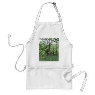 Mines of Spain trees Aprons