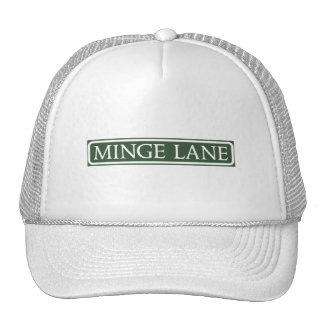 Minge Lane, Street Sign, Worcestershire, UK Cap