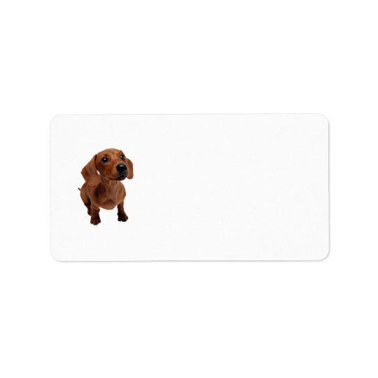 Mini Dachshund Address Labels
