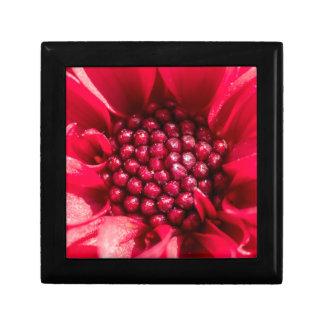 Mini Dahlia range Small Square Gift Box