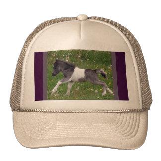 Mini Horse Hats