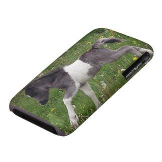 Mini Horse iPhone 3 Covers