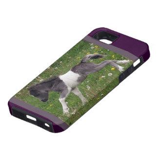 Mini Horse iPhone 5 Covers