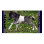 Mini Horse Pack Of Standard Business Cards