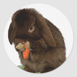 Mini Lop Bunny and carrot Classic Round Sticker