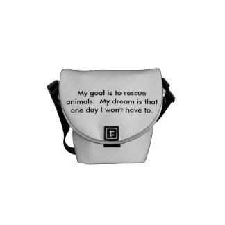 Mini Messenger Bag