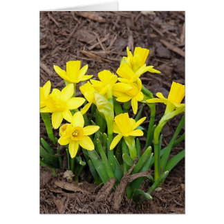 Mini Narcissus Stationery Note Card