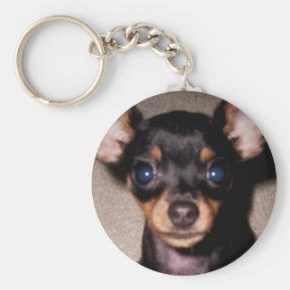 mini pinscher. basic round button key ring