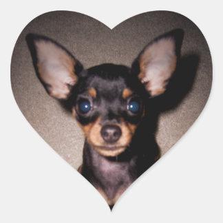 mini pinscher. heart sticker
