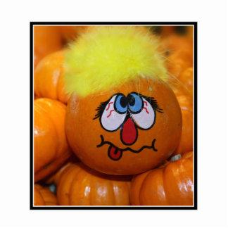 Mini Pumpkin Face Photo Cut Out