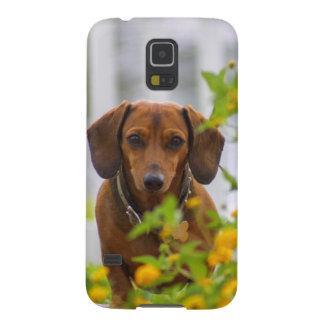 Mini Red Dachshund Galaxy S5 Case