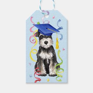 Mini Schnauzer Graduate