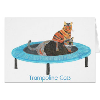 Mini Trampoline Cats 2, Greeting Cards