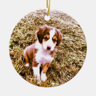 Miniature Australian Shepherd! Mini Aussie Puppy! Christmas Ornament