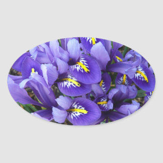 Miniature Blue Irises Spring Floral Oval Sticker