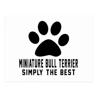 Miniature Bull Terrier Simply the best Post Cards