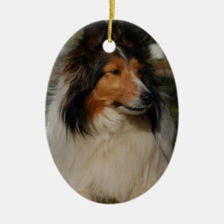 Miniature Collie Ornaemnt Christmas Ornament