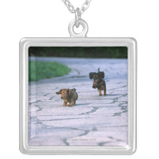 Miniature Dachshund 3 Silver Plated Necklace