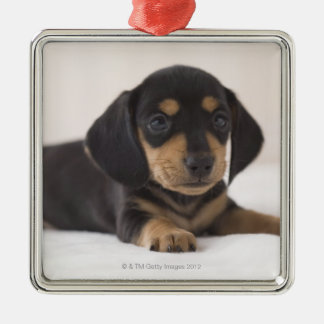 Miniature Dachshund Christmas Ornament