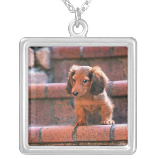 Miniature Dachshund Silver Plated Necklace