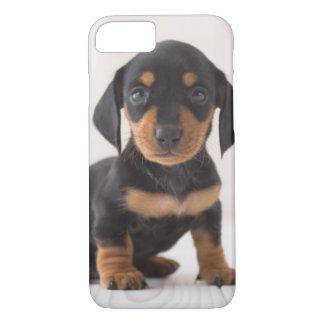 Miniature Dachshund Sitting iPhone 8/7 Case